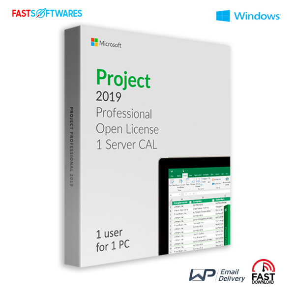 Microsoft Project 2019 Professional Server